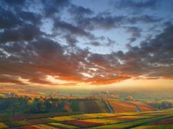 Landscape (10)