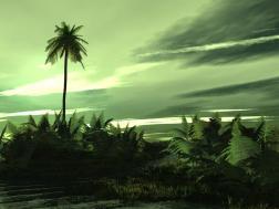 Landscape (12)