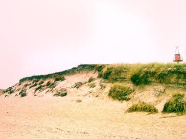 Landscape (28)