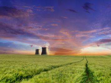 Landscape (4)