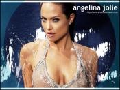angelina_jolie_017